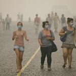 Предпринятые меры по борьбе со смогом